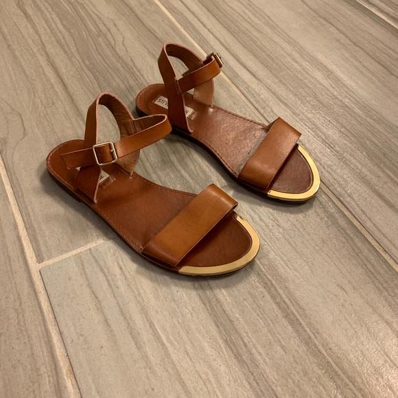 7e7eea13654 Steve Madden Donddi Sandals